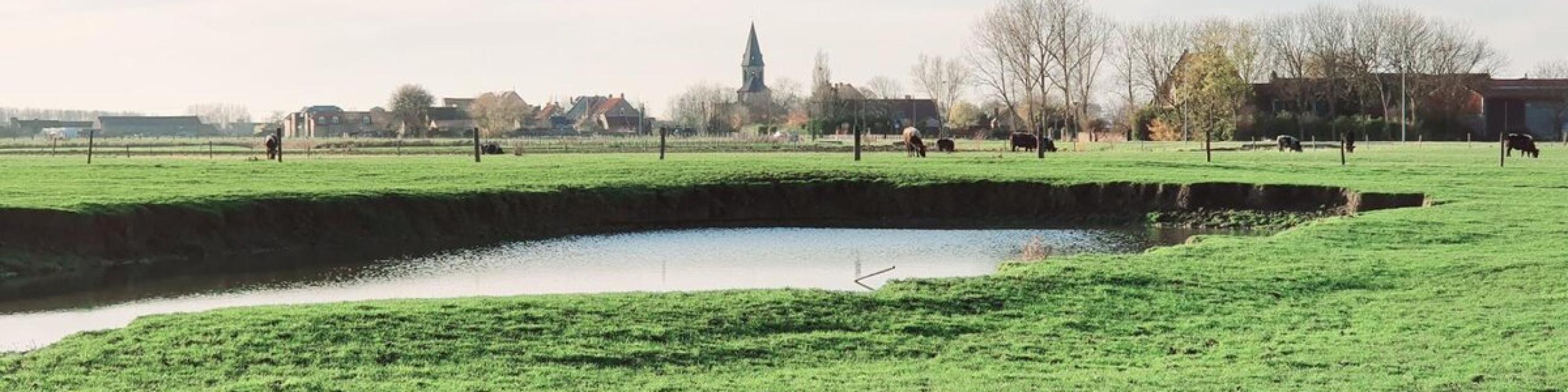 Duin en polder