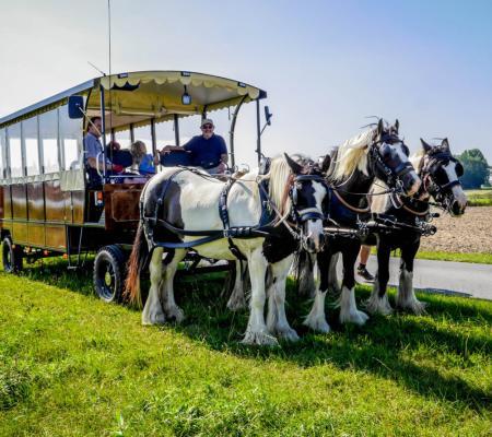 Paardentramtochten 't Lindenhof